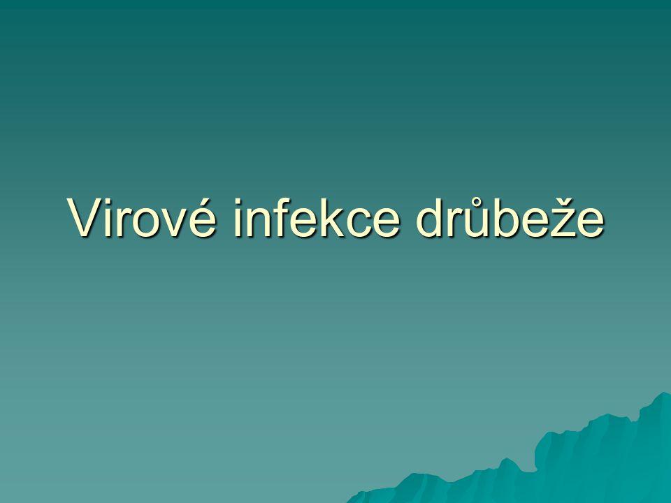 Virové infekce drůbeže