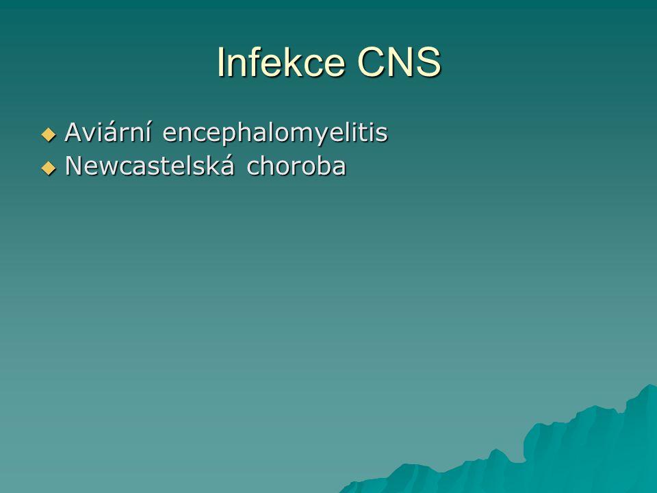 Infekce CNS Aviární encephalomyelitis Newcastelská choroba