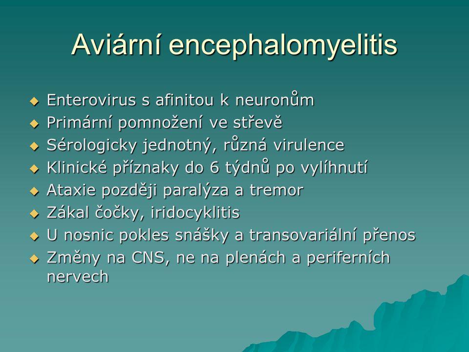 Aviární encephalomyelitis