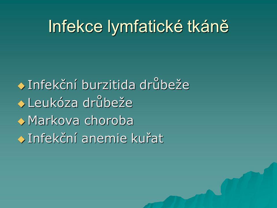 Infekce lymfatické tkáně