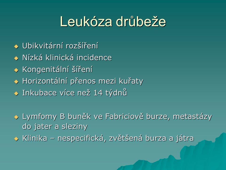 Leukóza drůbeže Ubikvitární rozšíření Nízká klinická incidence