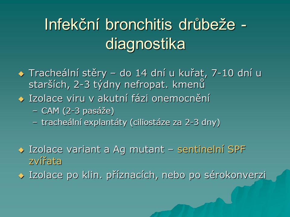 Infekční bronchitis drůbeže - diagnostika