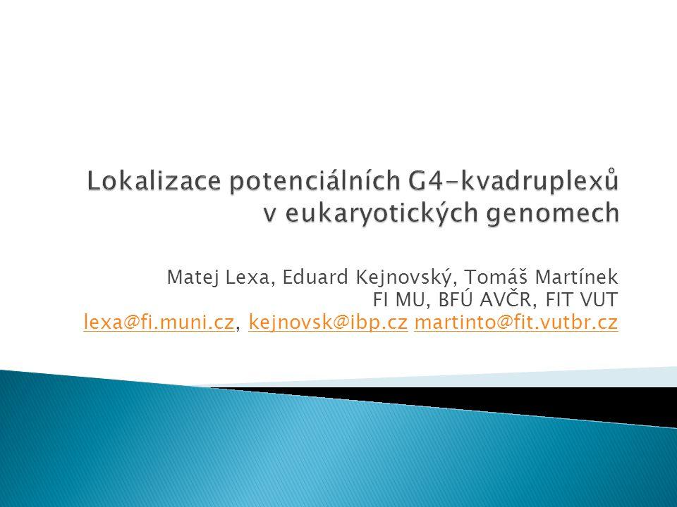 Lokalizace potenciálních G4-kvadruplexů v eukaryotických genomech