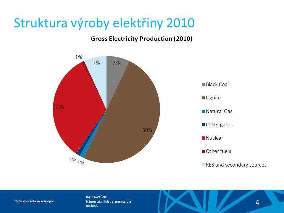 Struktura výroby elektřiny 2010