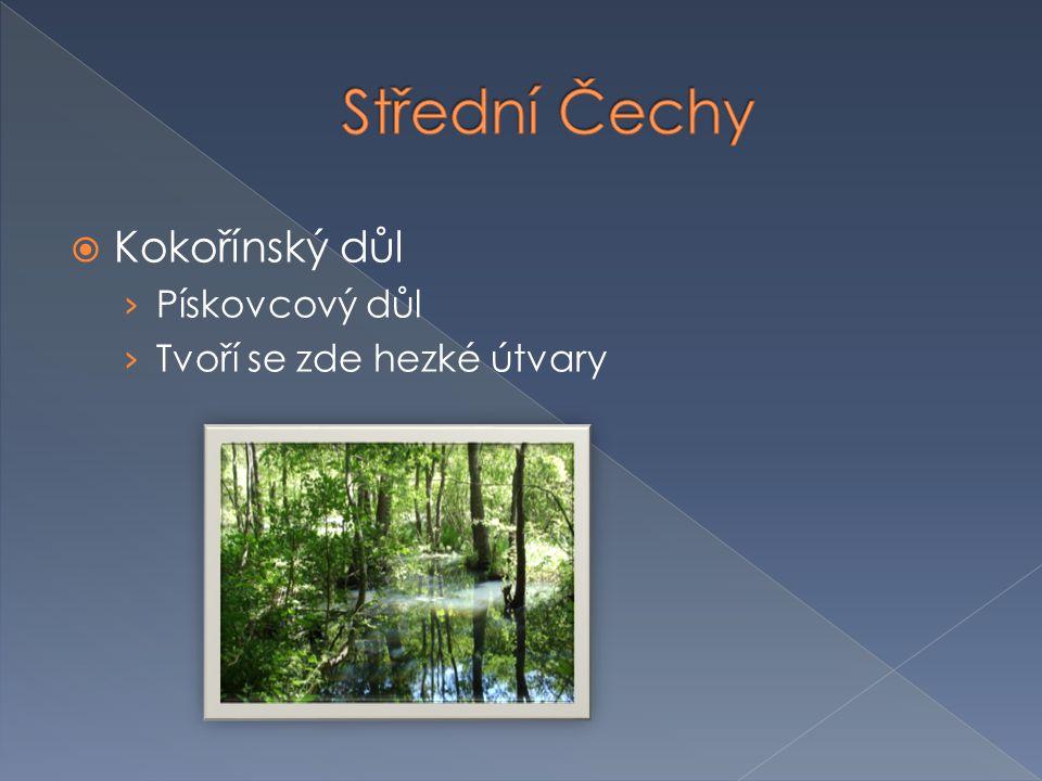 Střední Čechy Kokořínský důl Pískovcový důl Tvoří se zde hezké útvary