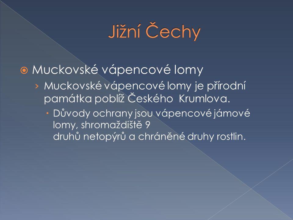 Jižní Čechy Muckovské vápencové lomy