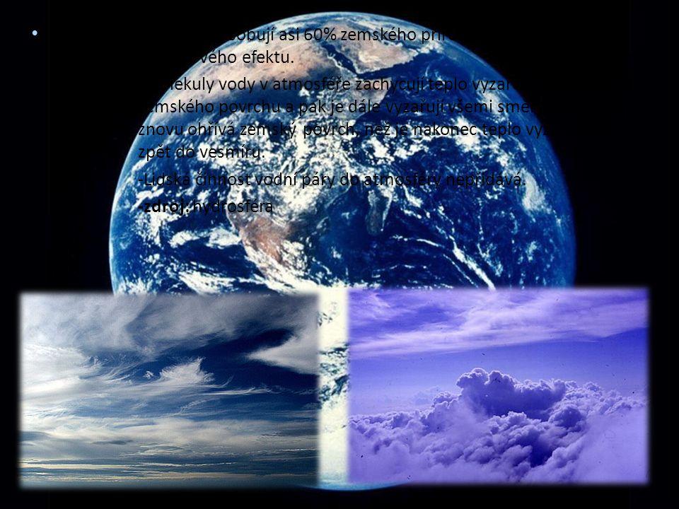 H2O (vodní páry) - způsobují asi 60% zemského přirozeného