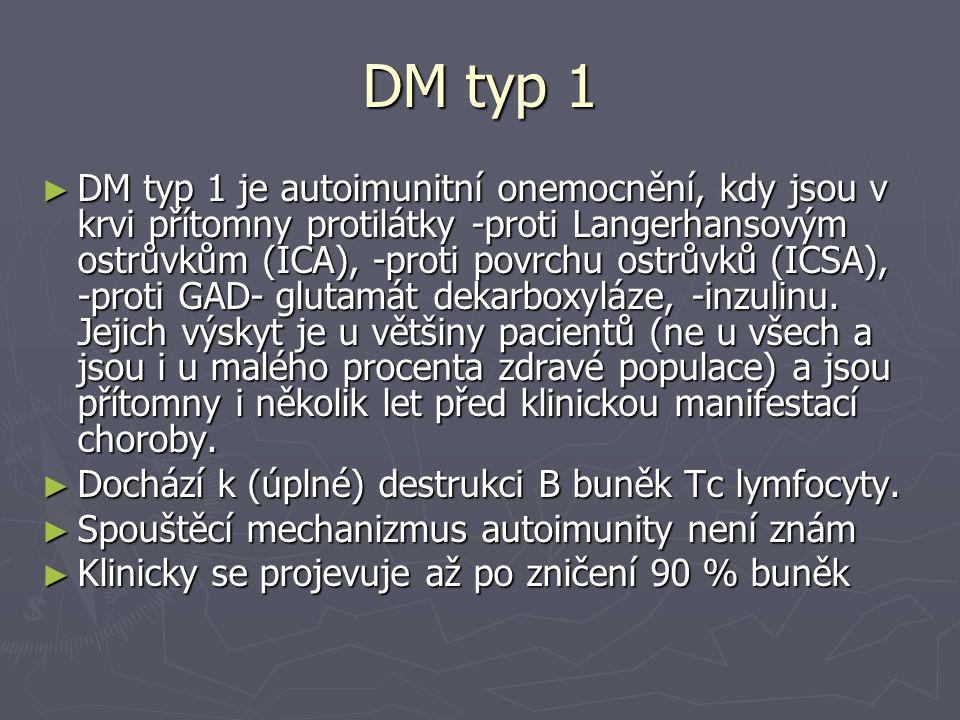 DM typ 1