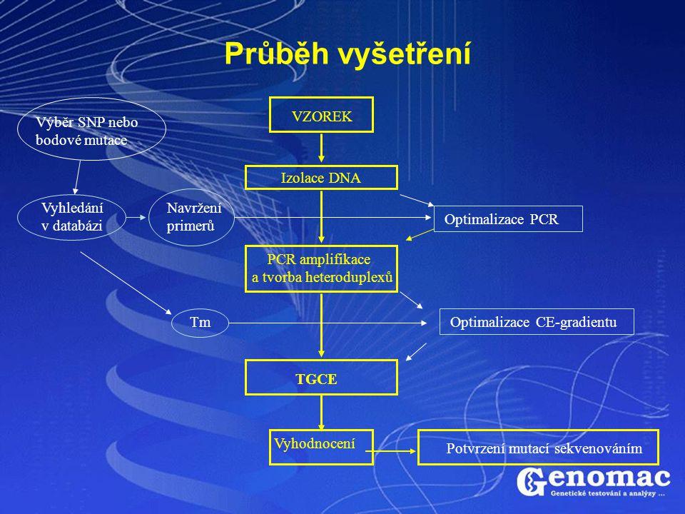 Průběh vyšetření Výběr SNP nebo bodové mutace Vyhledání v databázi Tm