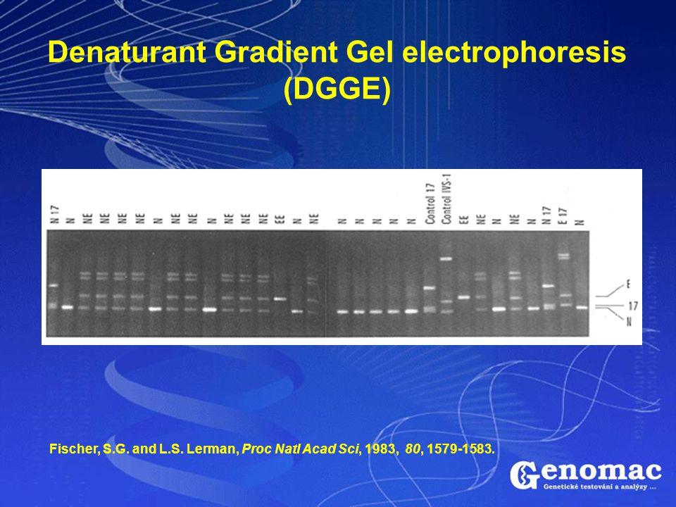 Denaturant Gradient Gel electrophoresis (DGGE)