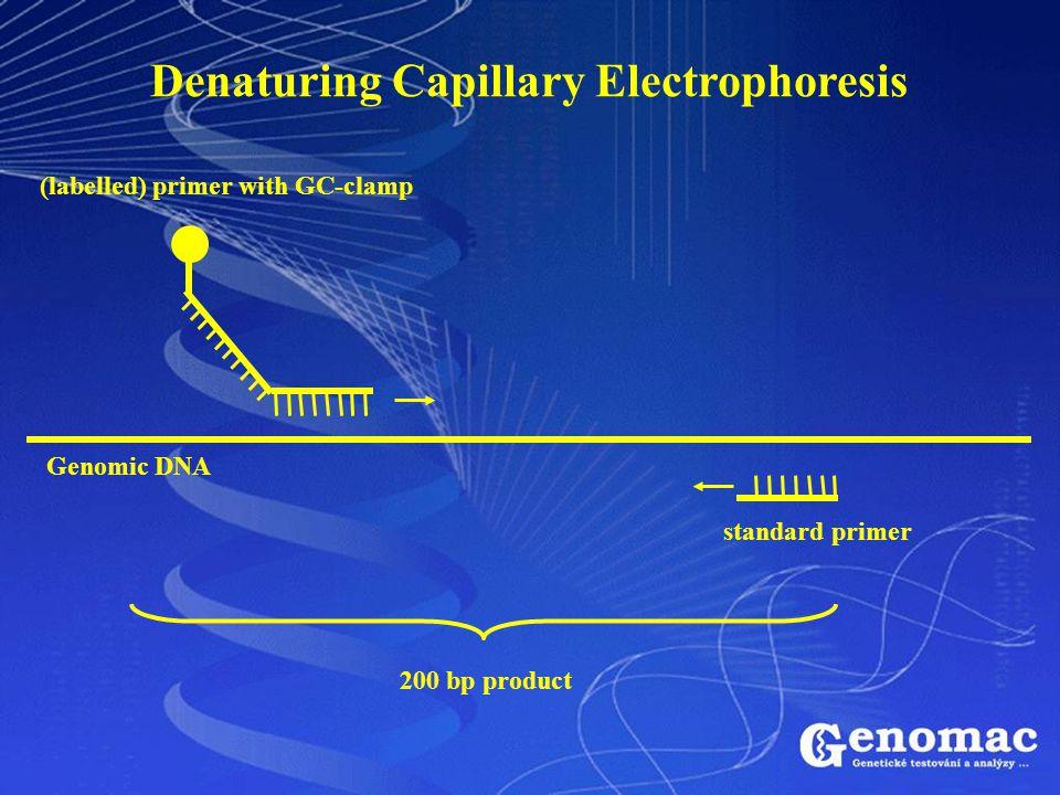 Denaturing Capillary Electrophoresis