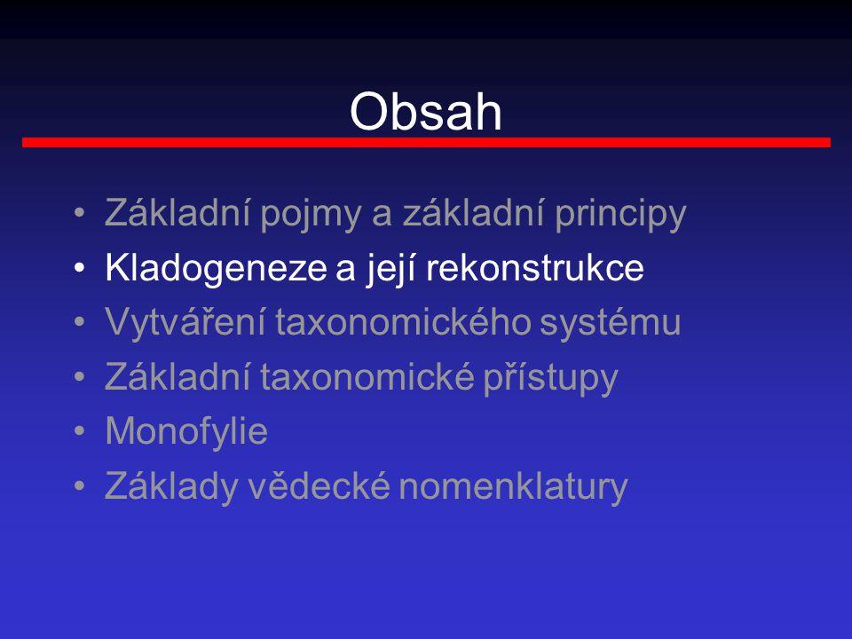 Obsah Základní pojmy a základní principy