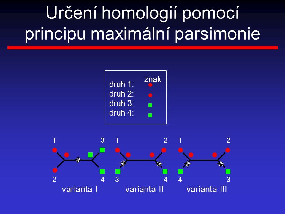 Určení homologií pomocí principu maximální parsimonie