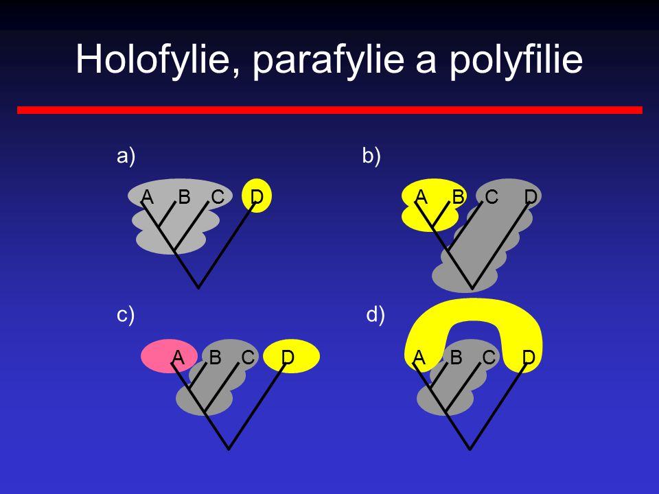 Holofylie, parafylie a polyfilie