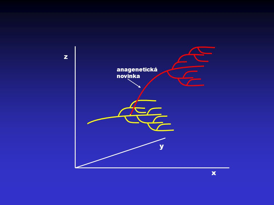 z y x anagenetická novinka