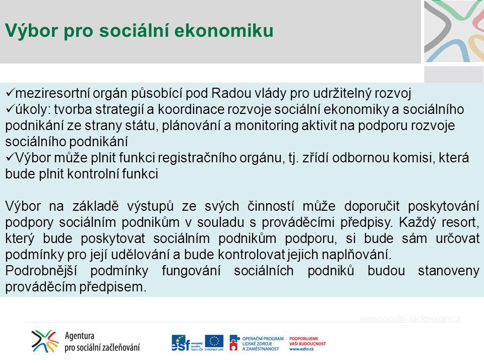 Výbor pro sociální ekonomiku