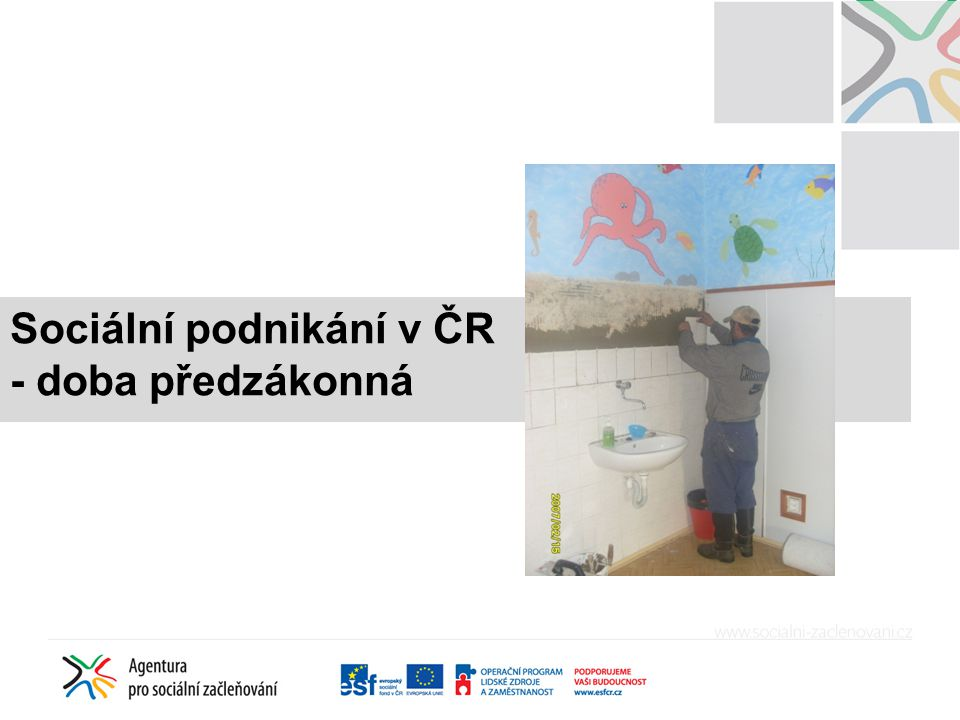 Sociální podnikání v ČR - doba předzákonná