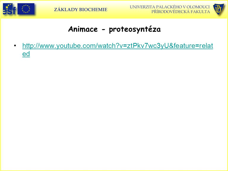 Animace - proteosyntéza