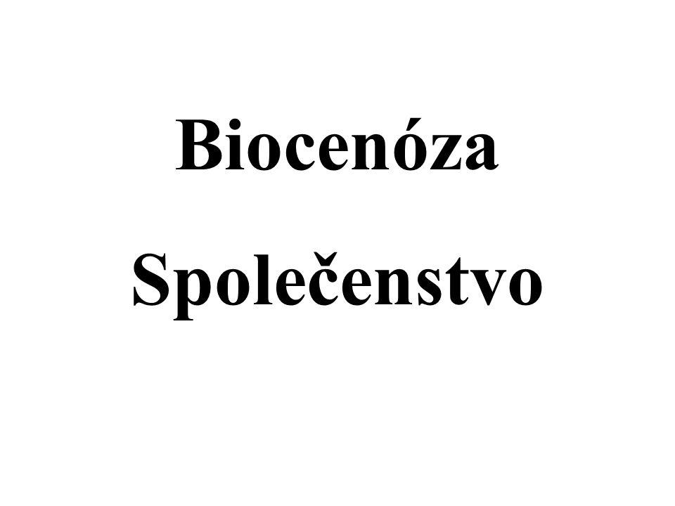 Biocenóza Společenstvo