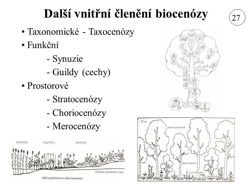 Další vnitřní členění biocenózy
