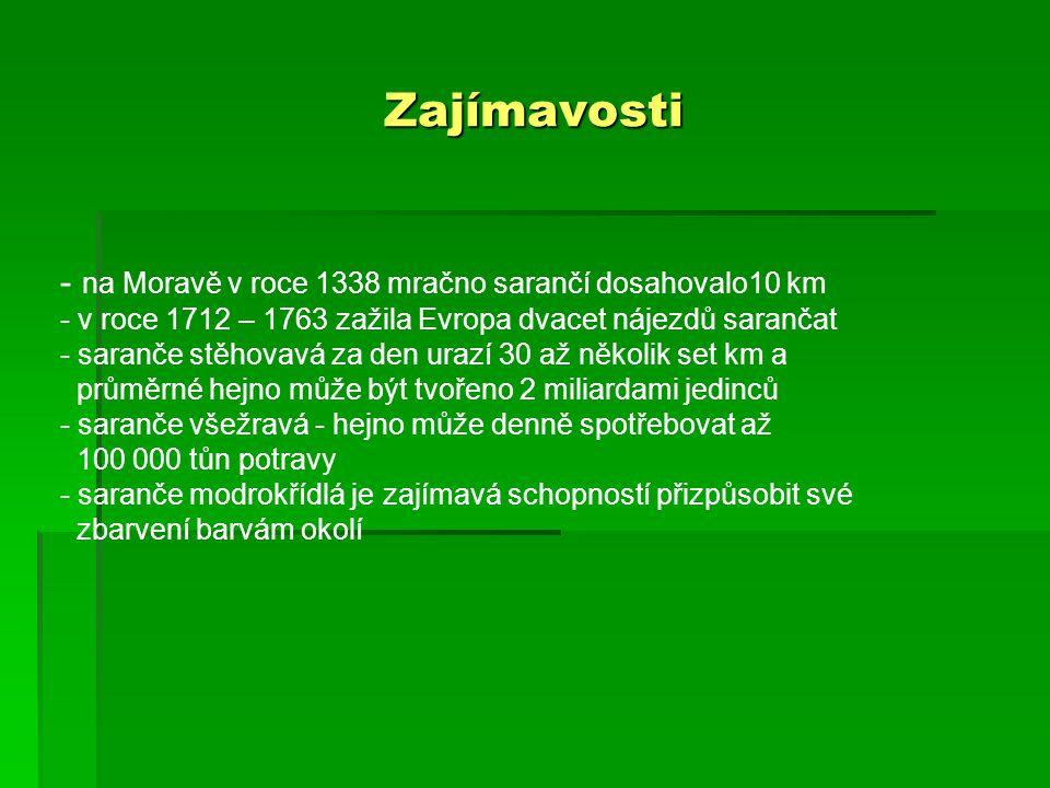 Zajímavosti na Moravě v roce 1338 mračno sarančí dosahovalo10 km