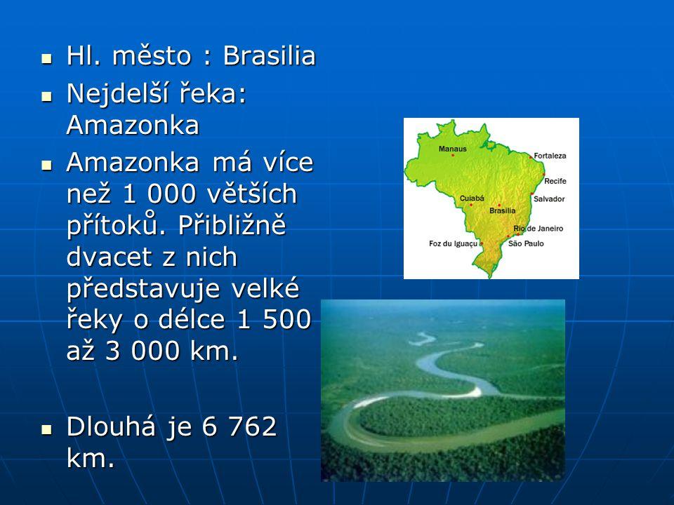 Hl. město : Brasilia Nejdelší řeka: Amazonka.