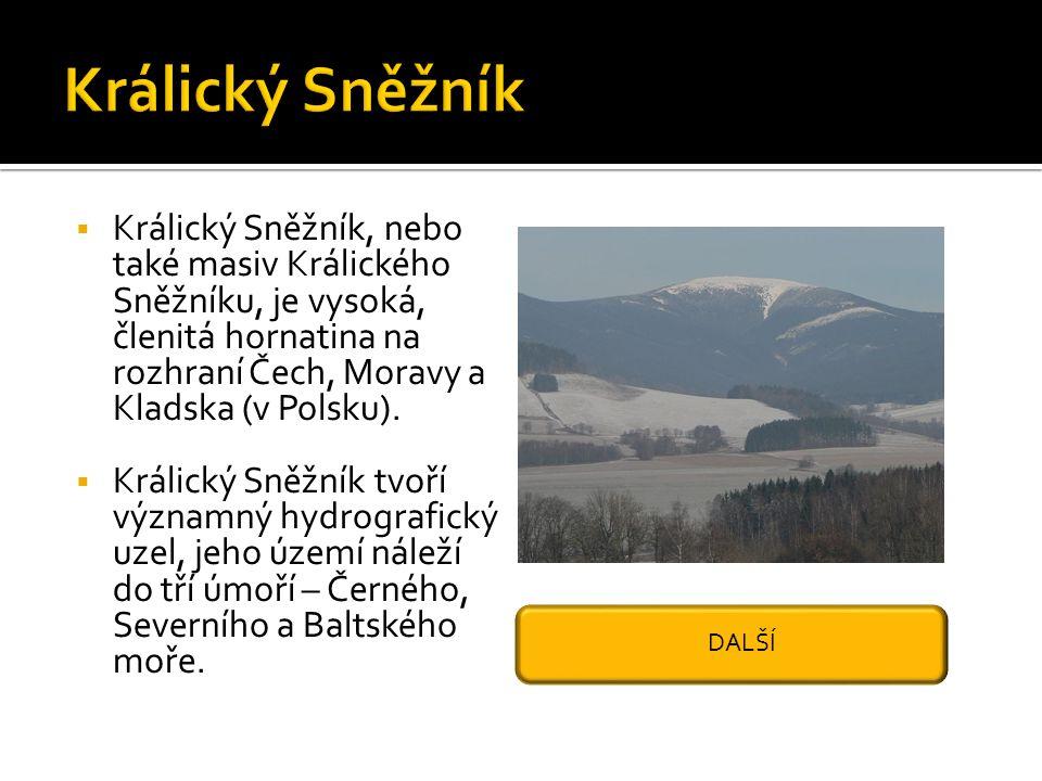 Králický Sněžník Králický Sněžník, nebo také masiv Králického Sněžníku, je vysoká, členitá hornatina na rozhraní Čech, Moravy a Kladska (v Polsku).