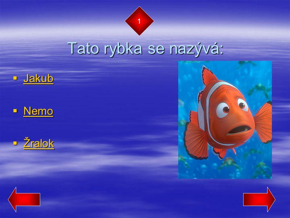 1 Tato rybka se nazývá: Jakub Nemo Žralok