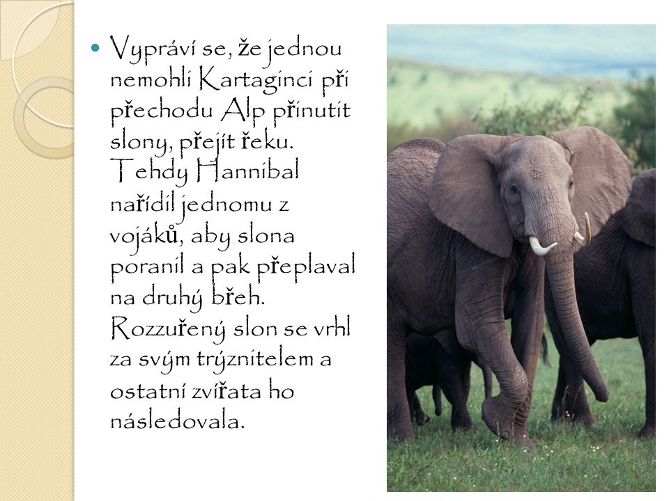 Vypráví se, že jednou nemohli Kartaginci při přechodu Alp přinutit slony, přejít řeku.
