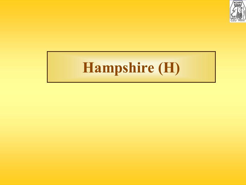 Hampshire (H)