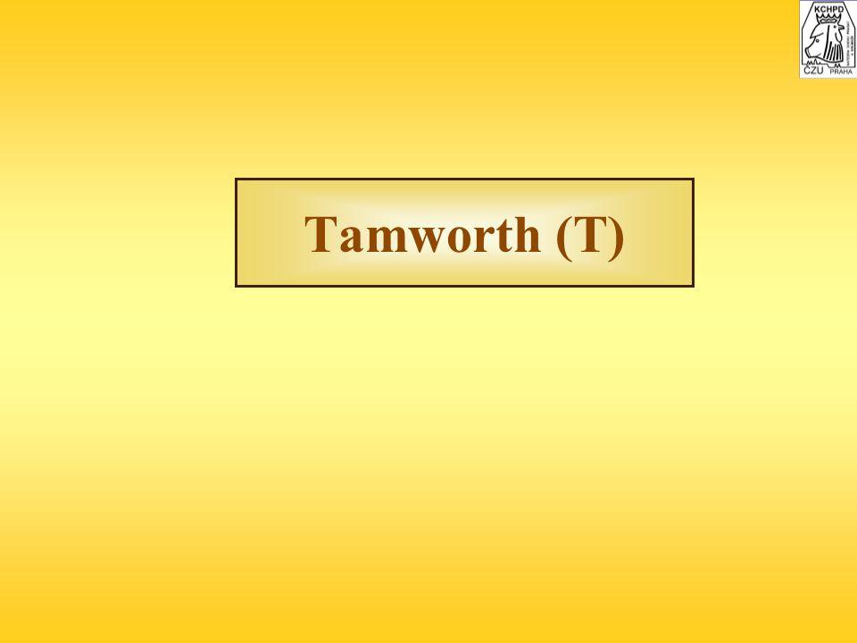 Tamworth (T)