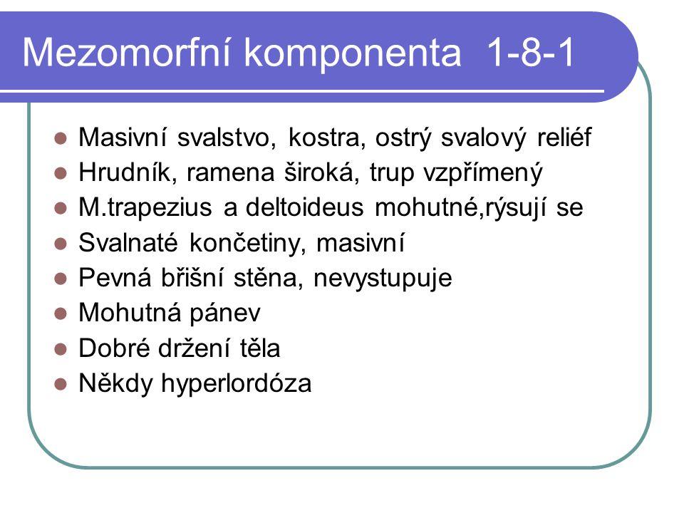 Mezomorfní komponenta 1-8-1