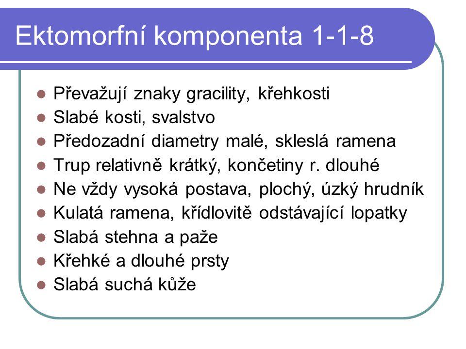 Ektomorfní komponenta 1-1-8