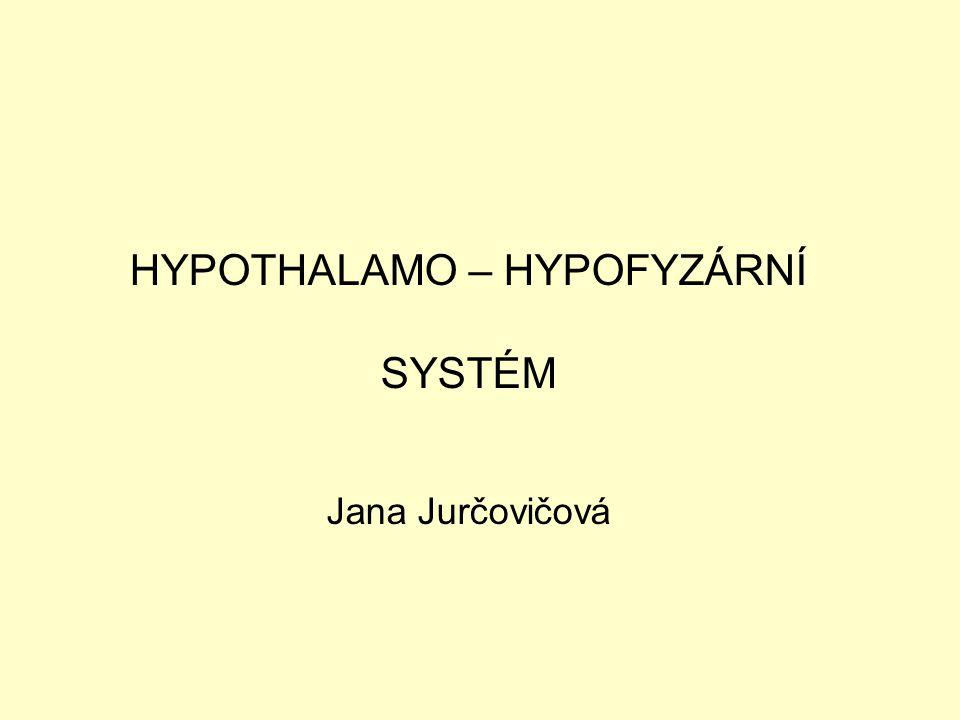 HYPOTHALAMO – HYPOFYZÁRNÍ