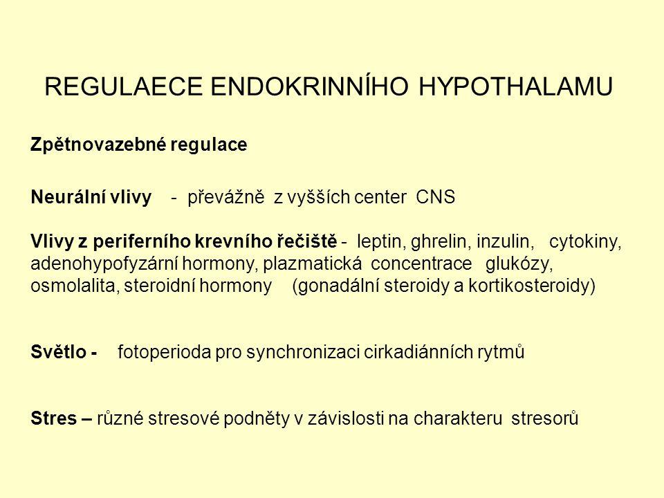 REGULAECE ENDOKRINNÍHO HYPOTHALAMU