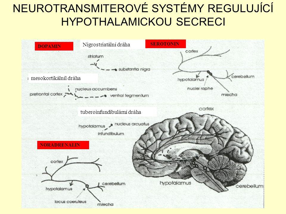 NEUROTRANSMITEROVÉ SYSTÉMY REGULUJÍCÍ HYPOTHALAMICKOU SECRECI
