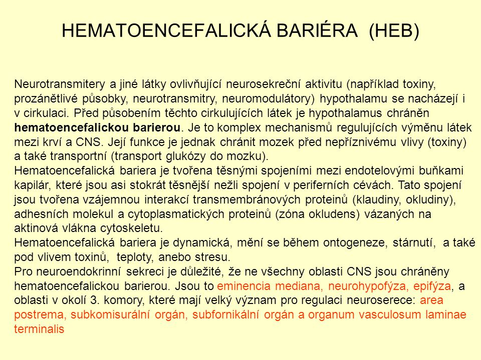HEMATOENCEFALICKÁ BARIÉRA (HEB)