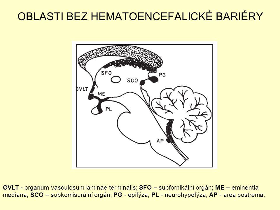 OBLASTI BEZ HEMATOENCEFALICKÉ BARIÉRY