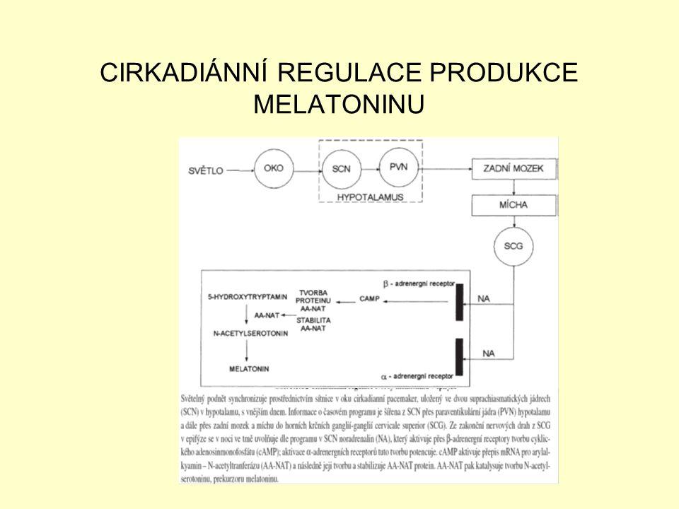 CIRKADIÁNNÍ REGULACE PRODUKCE MELATONINU