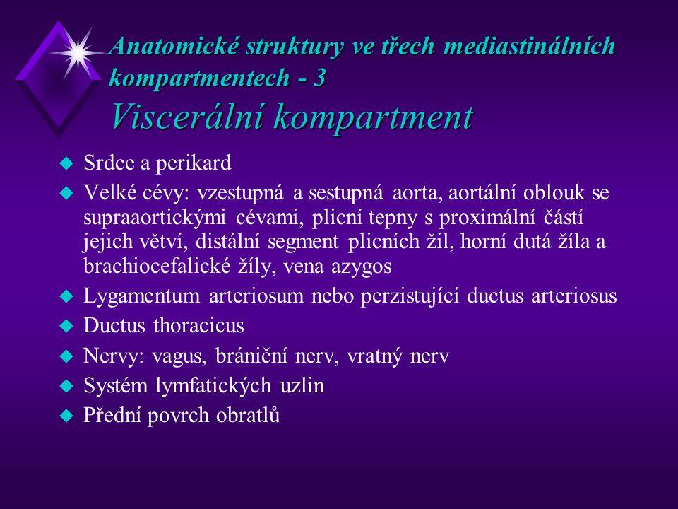 Anatomické struktury ve třech mediastinálních kompartmentech - 3 Viscerální kompartment