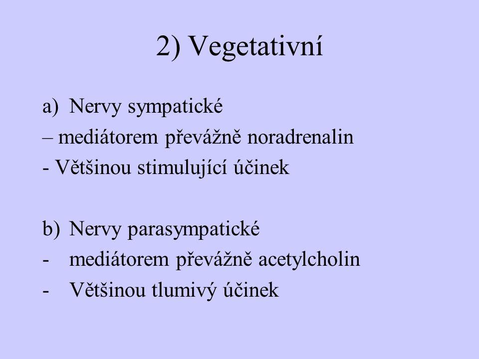 2) Vegetativní Nervy sympatické – mediátorem převážně noradrenalin