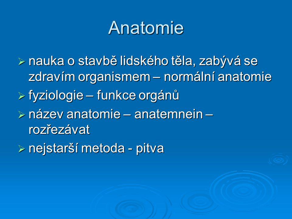 Anatomie nauka o stavbě lidského těla, zabývá se zdravím organismem – normální anatomie. fyziologie – funkce orgánů.