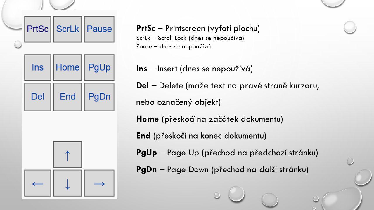PrtSc – Printscreen (vyfotí plochu)