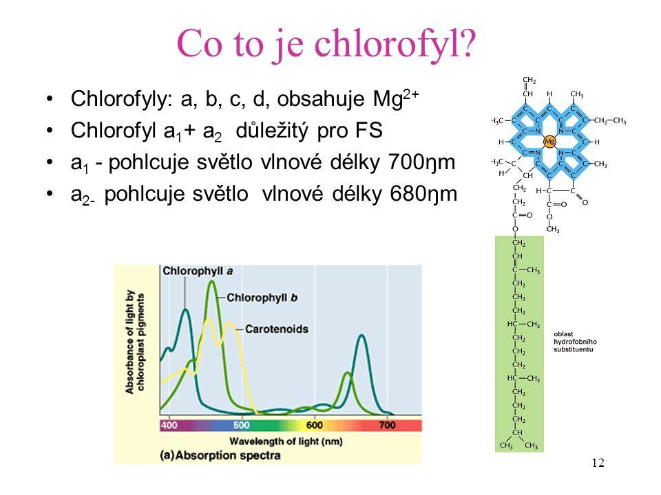 Co to je chlorofyl Chlorofyly: a, b, c, d, obsahuje Mg2+