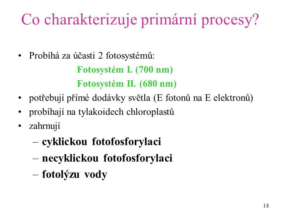Co charakterizuje primární procesy