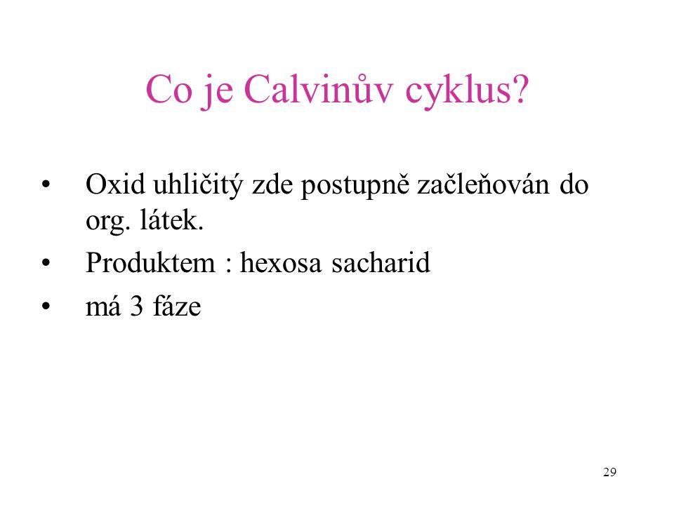 Co je Calvinův cyklus Oxid uhličitý zde postupně začleňován do org. látek. Produktem : hexosa sacharid.