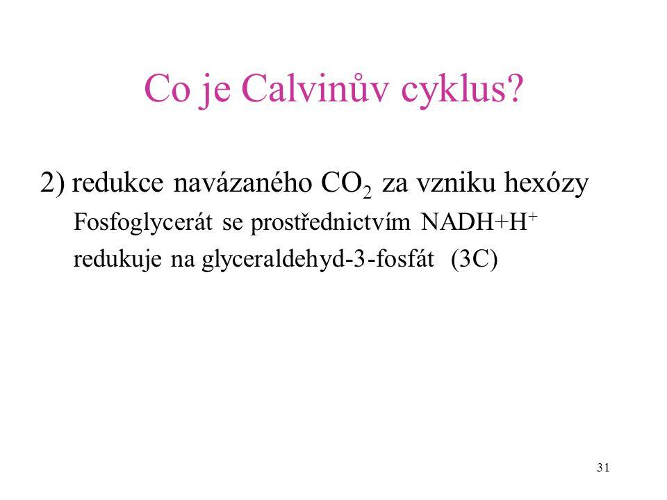 Co je Calvinův cyklus 2) redukce navázaného CO2 za vzniku hexózy