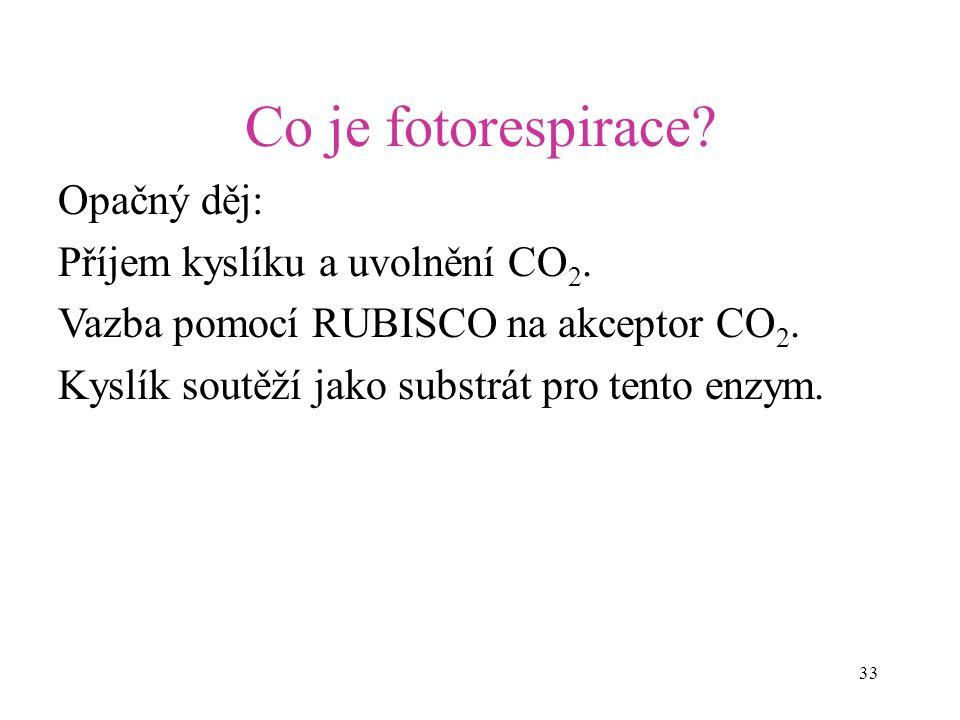 Co je fotorespirace Opačný děj: Příjem kyslíku a uvolnění CO2.