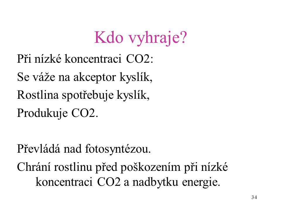 Kdo vyhraje Při nízké koncentraci CO2: Se váže na akceptor kyslík,