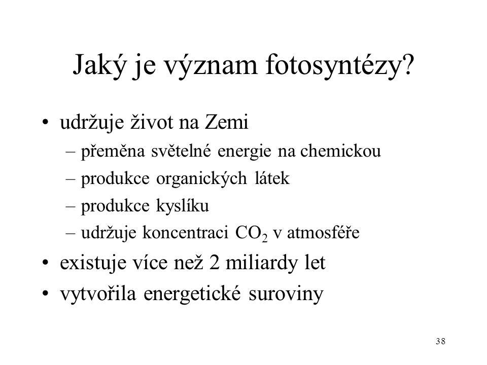 Jaký je význam fotosyntézy